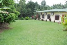 Large Lot Country Home with River / http://www.dominicalrealty.com/property/?id=1127