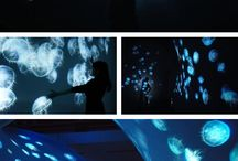 projections_installations