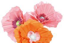 DIY Flowers / by Kelly Goebel