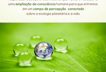Sustentabilidade de Vida / Painel do projeto Sustentabilidade de Vida. O conceito de Sustentabilidade de Vida está relacionado à nossa forma de ver e compreender o mundo em que vivemos e a nós mesmos. Para saber mais, visite: www.sustentabilidadedevida.com