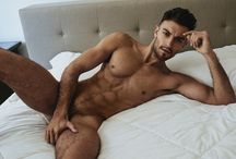 Jared North
