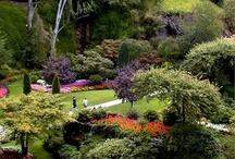 Gardens I've Visited...