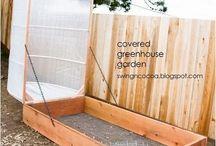Garden / Green house