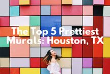 #POSE4HTOWN Series / Ever wondered where the best scenic places are in Houston, TX? This board is for you! Brought to you by http://www.ressamazing.weebly.com #Pose4Htown