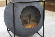 abri pour chat
