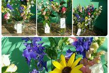 Bloemen van Marloes
