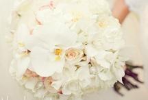 Wedding Ideas / by Stephanie Blue