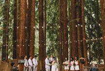 Weddings - Outdoor Spaces