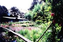 Jardines de ayer, hoy