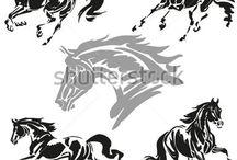 cienie zwierz