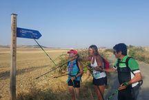 Camino de Santiago - Salidas Walkim - agosto 2016 / ¡Este verano hemos recorrido el Camino de Santiago durante 7 días llenos de risas y esfuerzo!