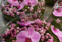 Arranjos rosa