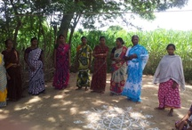 Cashew Value Chain: Livelihood Programme / Cashew Value Chain is an initiative to empower marginalized women in Samiyam Village. The images are collated by a  CARE India volunteer/employee, on his visit to the Nagapattinam District, Tamil Nadu.