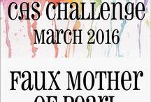 HLS March 2016 CAS Challenge