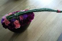 bloemen - flowers / by Silvia Rosier