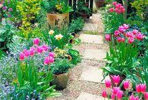 Садовые камни