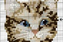 Kočky-předlohy