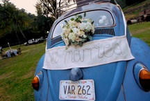 wedding touches i love / by lillie's flowers for weddings and celebrations