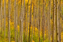 Colorado Scenic Photos