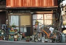 Japan, my favorite place / Tokyo, Osaka, Kyoto, Japan photography
