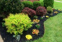 Kennebec garden