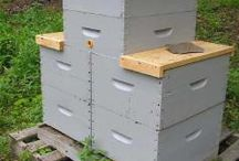 μελισια
