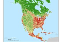 Influência Humana na Natureza