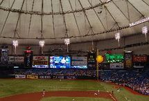 Tampa Bay Rays / I love baseball and the Tampa Bay Rays are my favorite team. / by John-Norman Tuck
