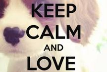 ceep calm and love dogs