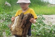 Nature study / Nature study, nature journals, nature activities and more. Outdoor learning and forest schools are popular for a reason.....they work. Start here and get outside today!