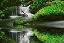 Waterfalls / Bilder von Wasserfällen