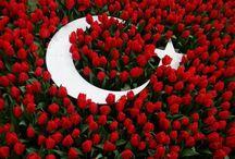 Türkiye / by Ferahnaz Cooper