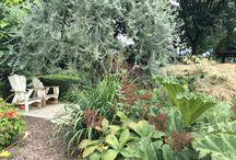 Marni's Schimmert / Tuinen en kwekerij