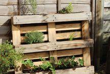 Platers/garden