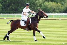 Polo / Sport of Kings
