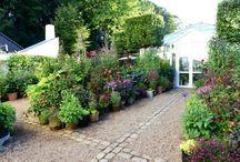 bahçeli