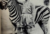 Vintage circus pics / by Alice Wilson