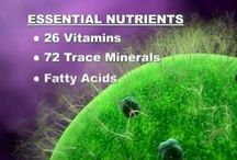 All Kinds Of Real Nutritional Products