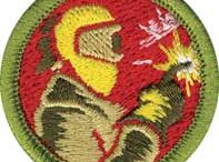 Merit Badges / by Boys' Life magazine