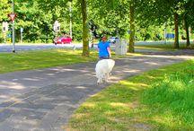 Wandelen is gezond / Neem eens de benenwagen wandelen is gezond