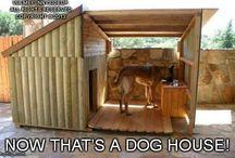 kutyaól