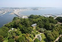 Tokyo / Awesome things to do in Tokyo