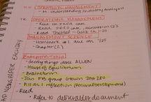 Studie  / Tips
