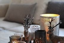Living room decor / by Denise Reiland