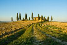 Tendi Toscane / Toscane, een bekende en populaire streek in Italië. Het Toscaanse landschap wordt gekenmerkt door groene heuvels met cipressen en prachtige steden en dorpen, waarvan Florence, Siena, San Gimignano, Lucca, Pisa, Arezzo en Volterra de bekendste zijn.