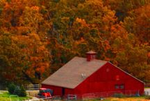 Barns,Barns Everywhere a Barn ! / Barns Love / by Debby Martin