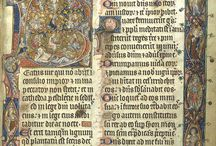 C&I - 14th Cent  - English / 14th Cent manuscripts, primarily English