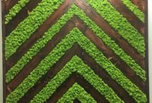 NBG Mossy Walls / Contact us today to use these NBG handmade mossy walls for your reception! We have 6 panels total: (3) four feet wide infinity panels, (2) four feet wide chevron panels, and (1) five feet wide chevron panel.