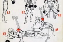 Training musculation