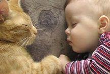 Babies&animals